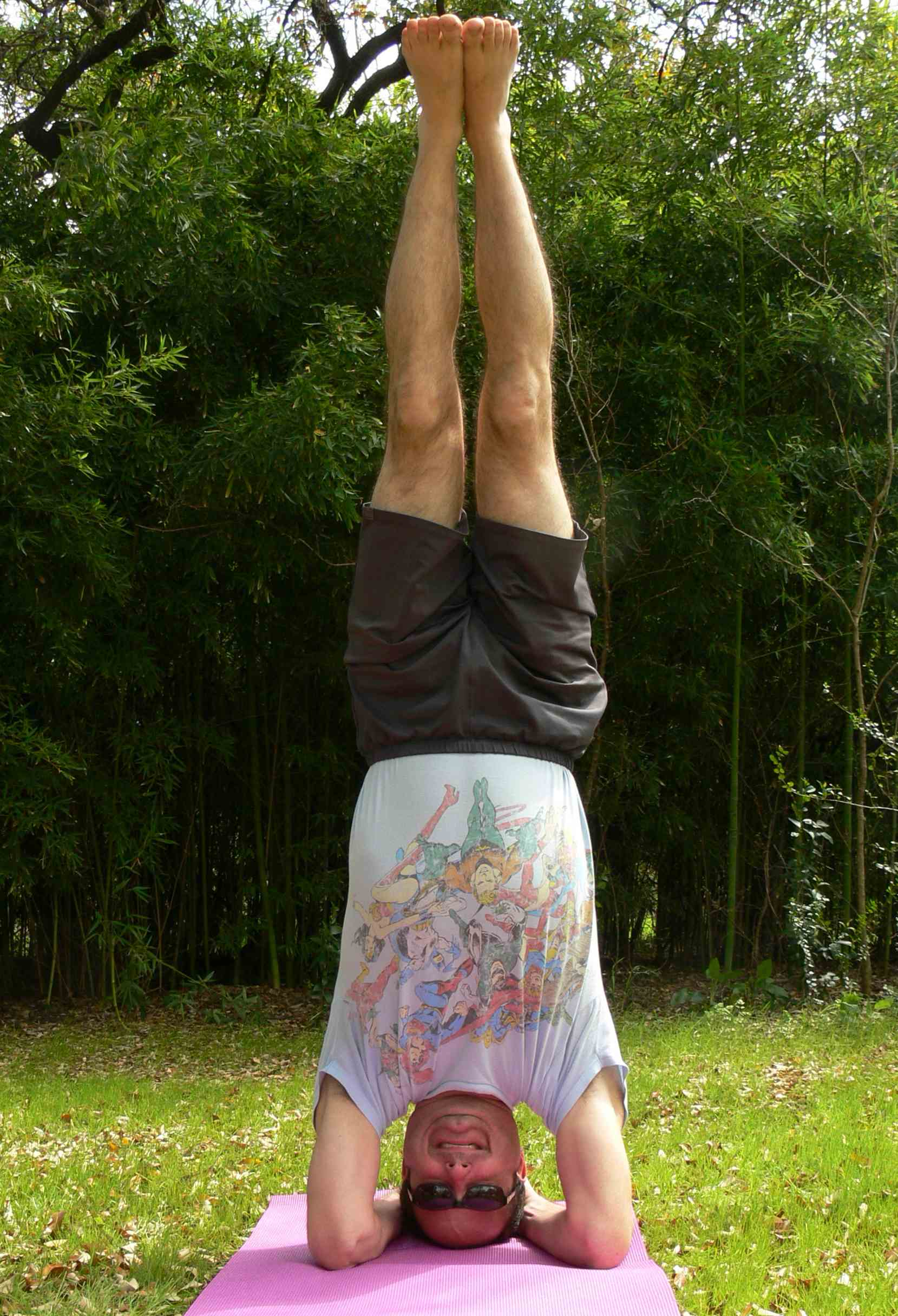 Pollackheadstand-lores